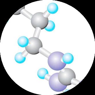 氨基酸.png